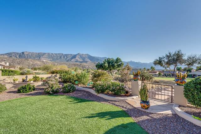 65463 E Brassie Drive, Tucson, AZ 85739 (#21929419) :: The Josh Berkley Team