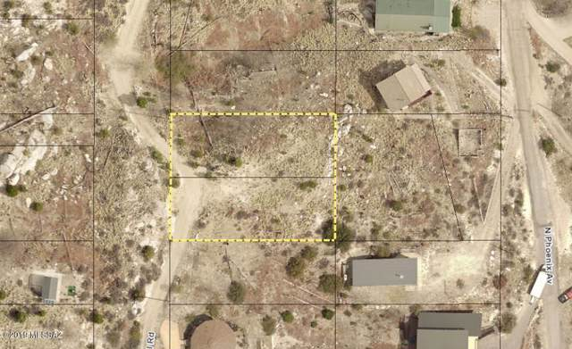 11214 E Upper Goat Hill Road #1, Mt. Lemmon, AZ 85619 (#21929677) :: Long Realty - The Vallee Gold Team