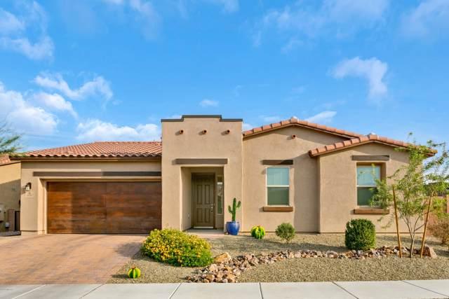 10787 E Placita Reina Linda, Tucson, AZ 85748 (#21929701) :: Long Realty - The Vallee Gold Team