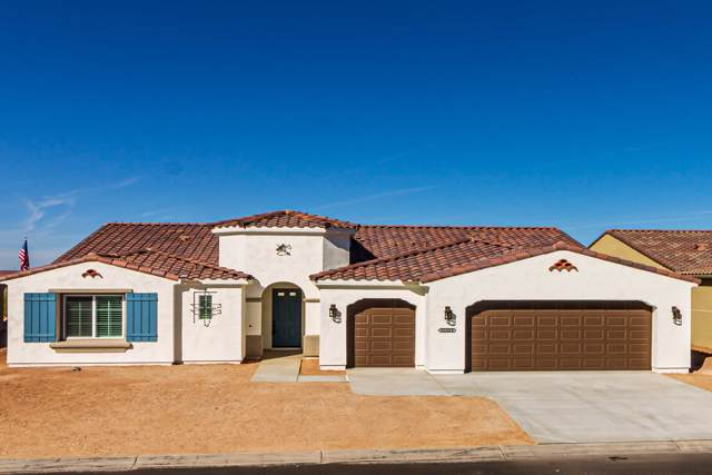 60068 Peppertree Lane, Oracle, AZ 85623 (#21929712) :: Long Realty - The Vallee Gold Team