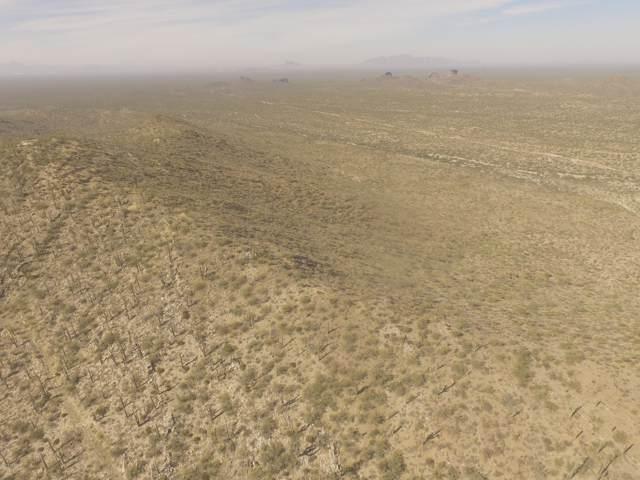 Derrio Canyon 40, Marana, AZ 85658 (#21929725) :: Long Realty - The Vallee Gold Team