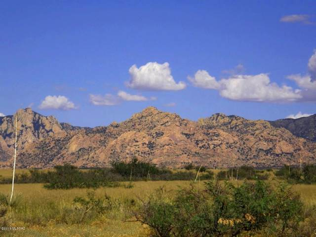 90 S Kino Road #90, St. David, AZ 85630 (#21929760) :: Long Realty - The Vallee Gold Team