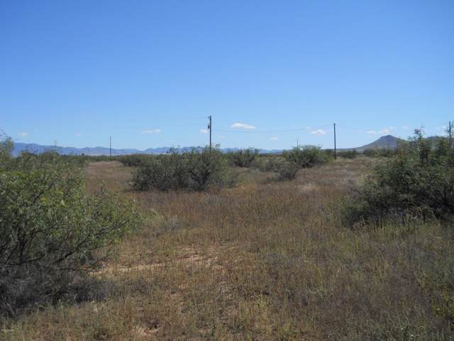 13272 S Ash Creek Road, Pearce, AZ 85625 (#21929901) :: Long Realty Company