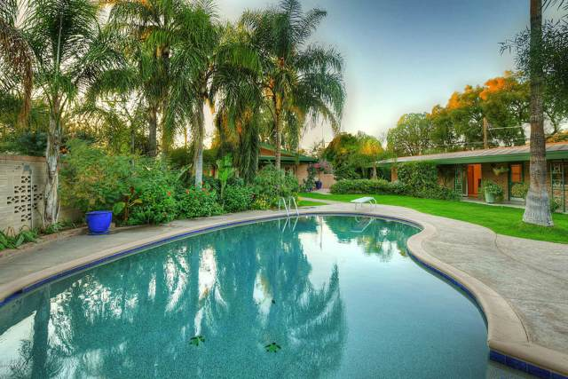 630 N Olsen Avenue, Tucson, AZ 85719 (#21929926) :: Tucson Property Executives