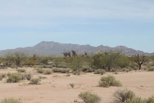 15180 W Alibi Drive, Tucson, AZ 85743 (#21929929) :: The Local Real Estate Group | Realty Executives