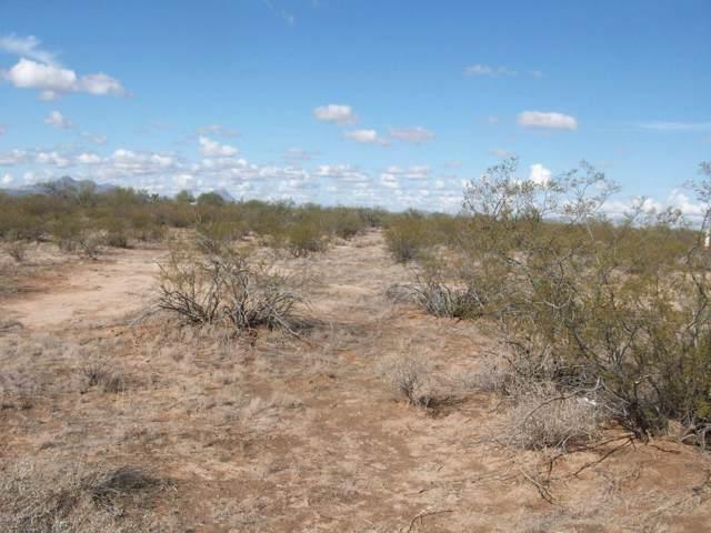 7851 N Dakota Plains Trail #20, Tucson, AZ 85743 (#21930354) :: Long Realty - The Vallee Gold Team