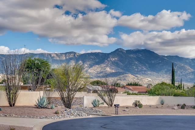 64220 E Santa Catalina Court, Tucson, AZ 85739 (#21930374) :: Long Realty - The Vallee Gold Team