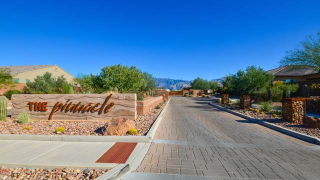 13482 N Alisma Court, Oro Valley, AZ 85755 (#21930484) :: Long Realty Company