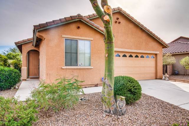 11533 W Rock Village Street, Marana, AZ 85658 (#21930541) :: Long Realty - The Vallee Gold Team