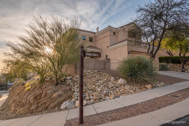 9840 E Spring View Place, Tucson, AZ 85749 (#21930552) :: Long Realty - The Vallee Gold Team