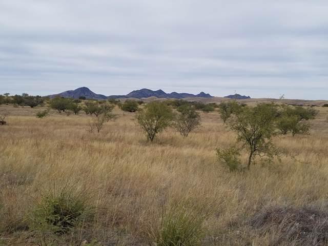 13355 E Beatty Ranch Road, Sonoita, AZ 85637 (#21930574) :: Long Realty - The Vallee Gold Team