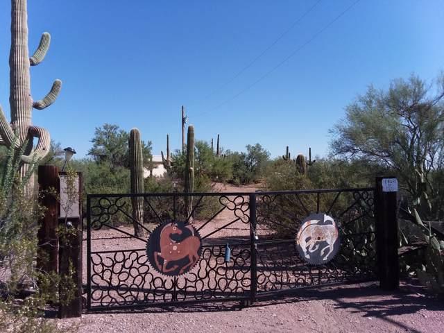 Marana, AZ 85653 :: Long Realty - The Vallee Gold Team
