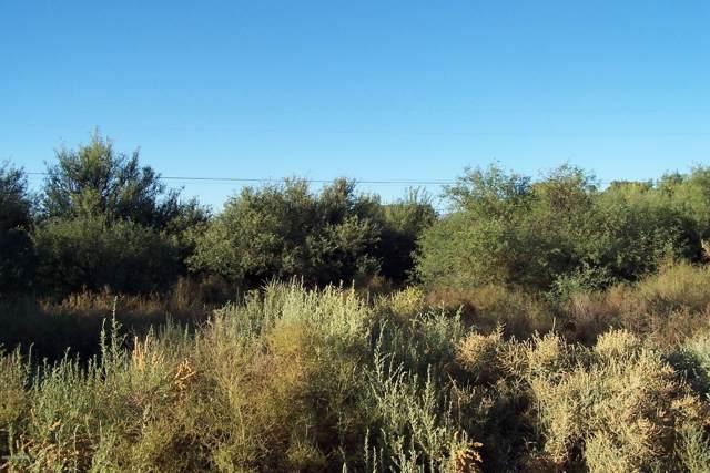 Lot 143 W Doggie Road #143, Safford, AZ 85546 (#21930638) :: Tucson Property Executives