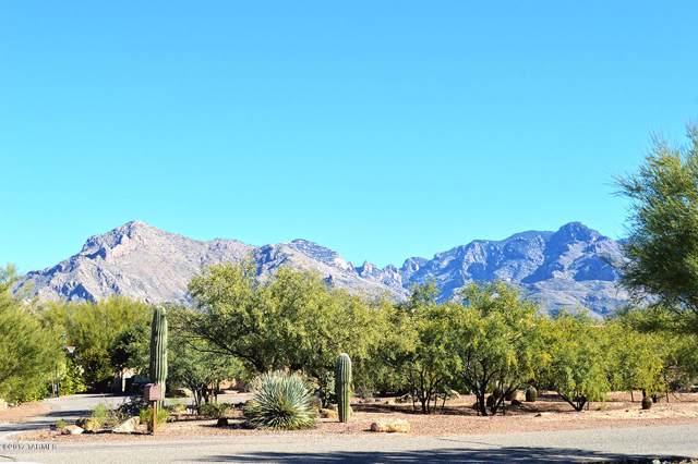 6859 N Placita Chula Vista Vista N, Tucson, AZ 85704 (#21930647) :: Long Realty - The Vallee Gold Team