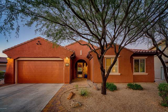 5387 S Black Falls Drive, Tucson, AZ 85747 (#21930740) :: Gateway Partners | Realty Executives Tucson Elite