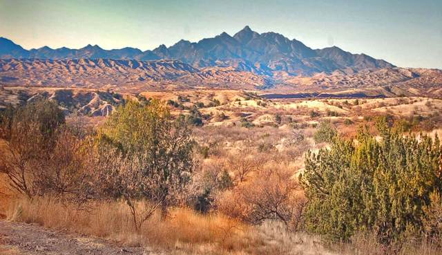 Lot 4 Rail X Ranch Estates Drive #4, Patagonia, AZ 85624 (#21931114) :: Long Realty - The Vallee Gold Team