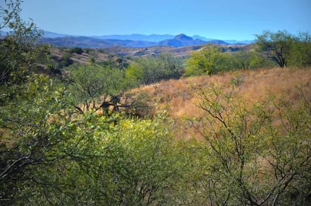 Lot 24 Rail X Ranch Estates Drive #24, Patagonia, AZ 85624 (#21931117) :: Long Realty - The Vallee Gold Team