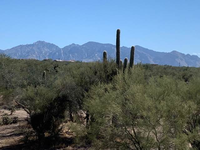 Wild Burro Road, Marana, AZ 85658 (#21931118) :: Gateway Partners | Realty Executives Tucson Elite