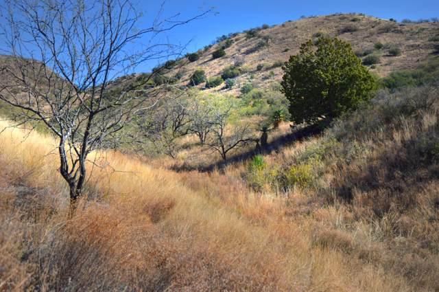 Lot 25 Rail X Ranch Estates Drive #25, Patagonia, AZ 85624 (#21931120) :: Long Realty - The Vallee Gold Team