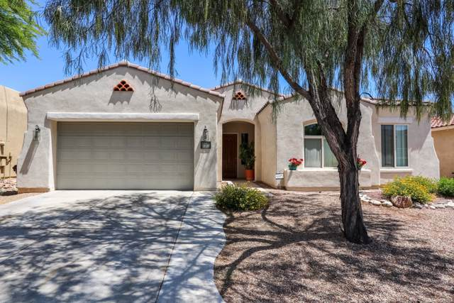 255 E Via Puente De La Lluvia, Sahuarita, AZ 85629 (#21931239) :: Long Realty - The Vallee Gold Team