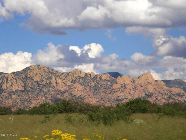 Lot 80 E Tom Jeffords Drive #80, St. David, AZ 85630 (#21931312) :: Luxury Group - Realty Executives Tucson Elite