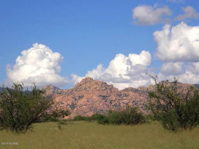 79-80 E Tom Jeffords Drive 79 & 80, St. David, AZ 85630 (#21931314) :: Long Realty - The Vallee Gold Team