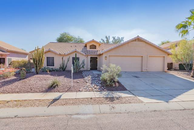 8918 N Palm Brook Drive, Tucson, AZ 85743 (MLS #21931430) :: The Property Partners at eXp Realty