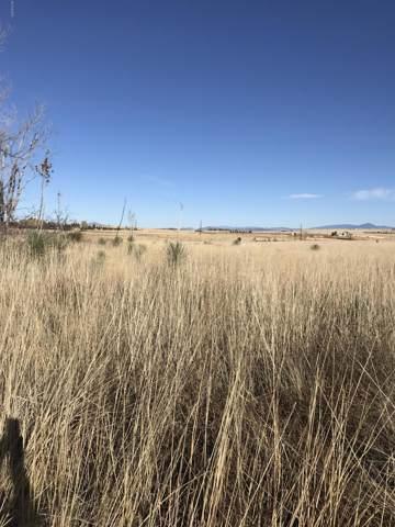 Elgin Road, Elgin, AZ 85611 (#21931485) :: Long Realty - The Vallee Gold Team