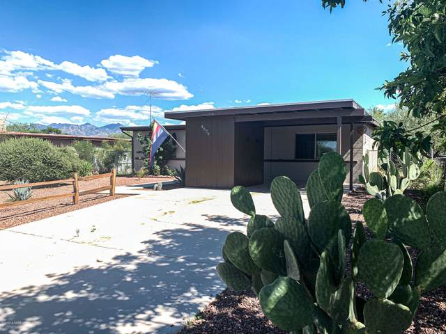4879 W Santa Maria Drive, Amado, AZ 85645 (#21931487) :: Long Realty - The Vallee Gold Team