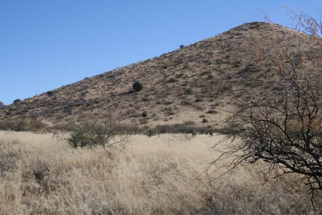 East Badger Trail #81, Pearce, AZ 85625 (#21931520) :: Luxury Group - Realty Executives Tucson Elite