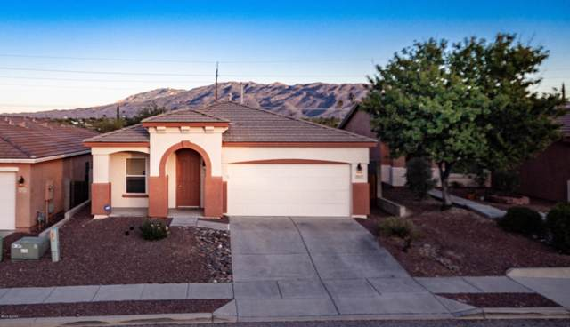 2017 S Aliso Spring Lane, Tucson, AZ 85748 (#21931523) :: Long Realty - The Vallee Gold Team