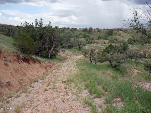 TBD Wood Canyon #7, Patagonia, AZ 85624 (#21931580) :: Long Realty - The Vallee Gold Team