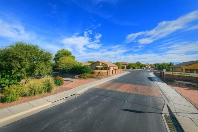 11972 W Fontenelle Drive, Marana, AZ 85653 (#21931589) :: Long Realty Company