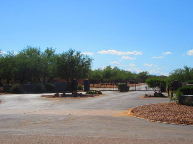13137 W Sandhill Sage Place W #167, Tucson, AZ 85743 (#21931671) :: Long Realty - The Vallee Gold Team