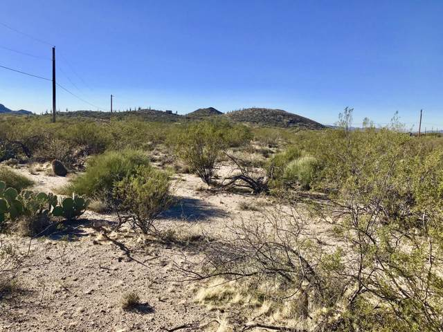 2.5 Acres Off Butterfly Lane, Catalina, AZ 85739 (#21931712) :: Long Realty Company