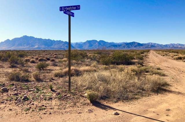 39.29 Acre W Cypress Lane, Portal, AZ 85632 (#21931970) :: Long Realty - The Vallee Gold Team