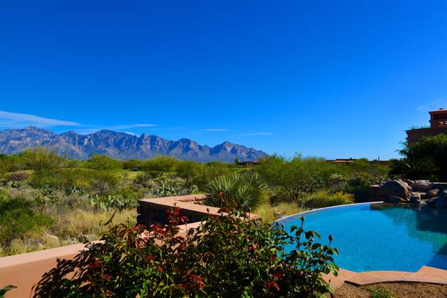 14262 N Giant Saguaro Place, Oro Valley, AZ 85755 (#22000026) :: Long Realty - The Vallee Gold Team