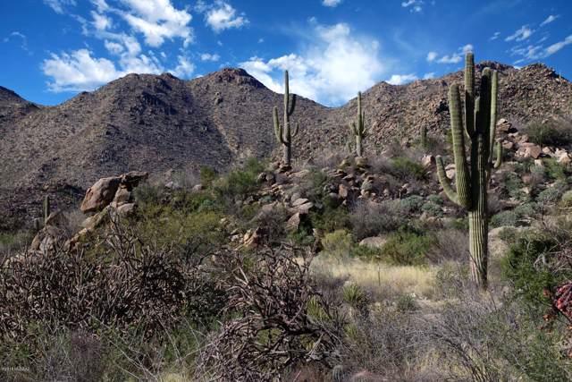3490 W Kester Watch Court #285, Marana, AZ 85658 (#22000252) :: The Josh Berkley Team