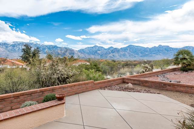 14362 N Green Meadow Lane, Oro Valley, AZ 85755 (#22000313) :: Long Realty - The Vallee Gold Team