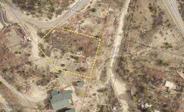 11330 E Bisbee Avenue #2, Mt. Lemmon, AZ 85619 (#22000337) :: Long Realty - The Vallee Gold Team
