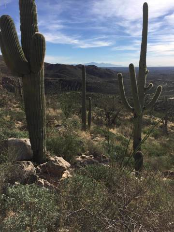 12959 E Cabeza De Vaca Street #0, Tucson, AZ 85749 (#22000525) :: Long Realty - The Vallee Gold Team