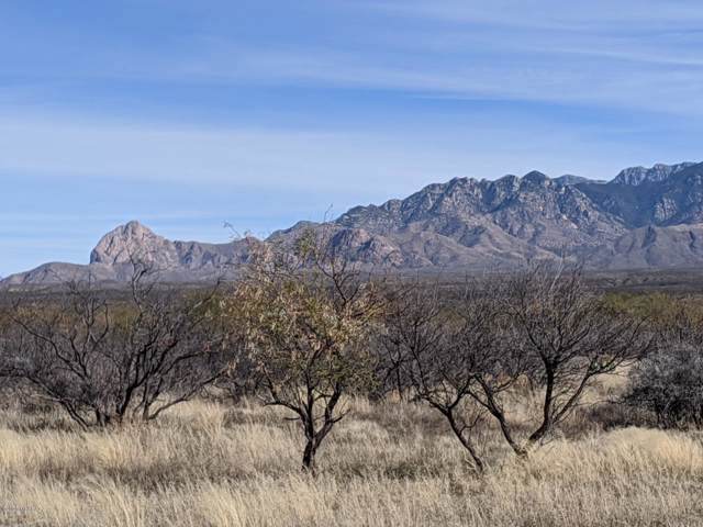 Tbd East Frontage Road Road, Tubac, AZ 85646 (#22000569) :: Long Realty - The Vallee Gold Team