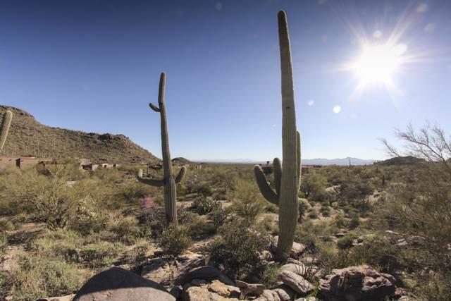 13718 N Nesting Quail Place #233, Marana, AZ 85658 (#22000647) :: Long Realty - The Vallee Gold Team