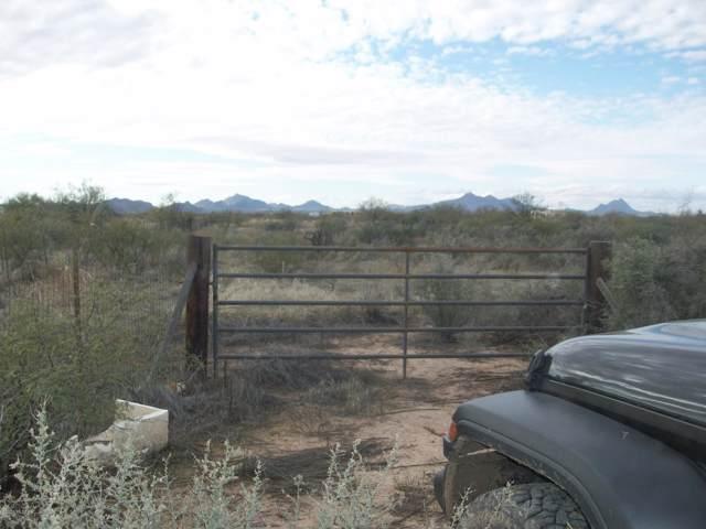 8151 N Maggies Farm Lane 15F, Tucson, AZ 85743 (#22000880) :: Long Realty - The Vallee Gold Team