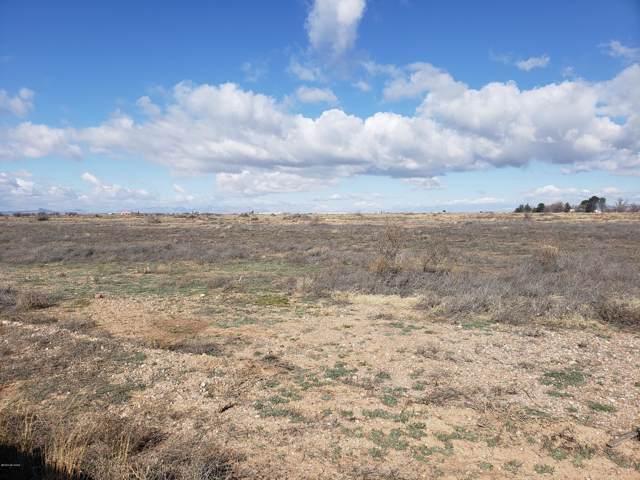 40 AC E Sulphur Springs Road, Willcox, AZ 85643 (#22001006) :: Long Realty - The Vallee Gold Team