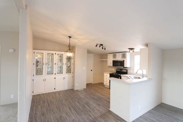 12853 W Blue Aloe Street, Tucson, AZ 85735 (MLS #22001051) :: The Property Partners at eXp Realty