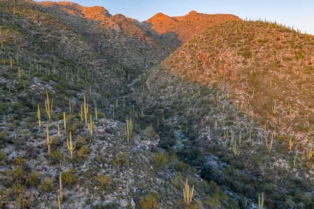 0000 N Avenida De La Colina #11, Tucson, AZ 85749 (#22001168) :: The Local Real Estate Group | Realty Executives