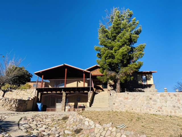 1124 W Cimarron Street, Nogales, AZ 85621 (MLS #22001190) :: The Property Partners at eXp Realty