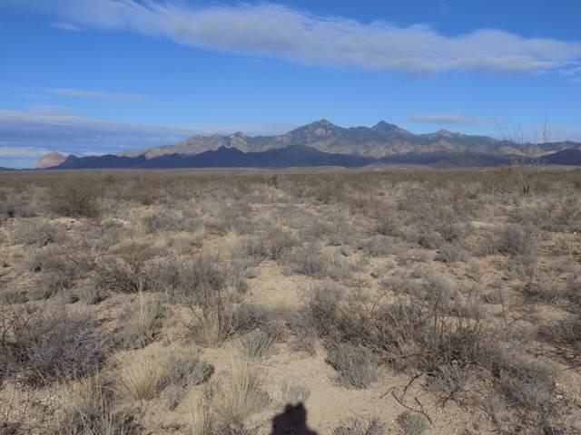 TBD Camino Obregon #73, Tubac, AZ 85646 (#22001203) :: The Local Real Estate Group | Realty Executives