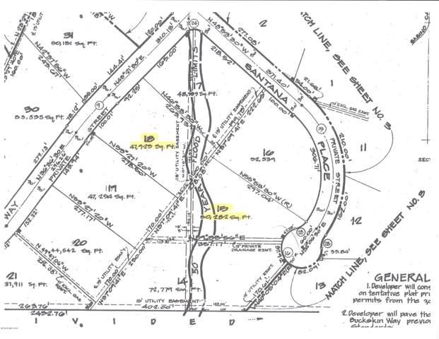 4470 N Buckskin Way Lot 18, Tucson, AZ 85750 (#22001345) :: Long Realty - The Vallee Gold Team